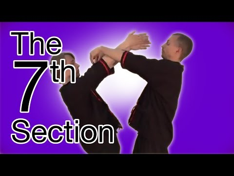 Wing Tsun 7th Chi Sau Section