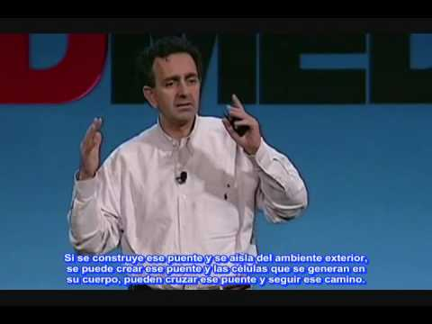 CIENCIA. Anthony Atala y la medicina regenerativa de órganos parte 1 de 2 TED.
