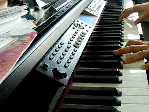 Parrot - Kim Jeong Hoon   Howl - Goong Ost - Piano Cover video
