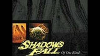Watch Shadows Fall Revel In My Loss video