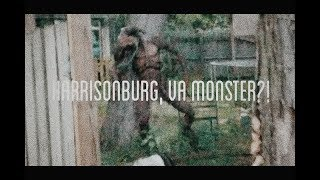 MONSTER IN HARRISONBURG, VA