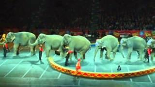 Ringling Bros. Presents Dragons - Majestic Elephants