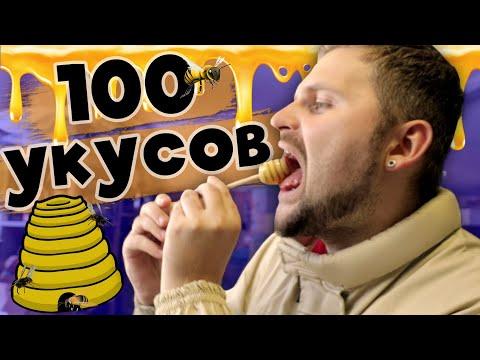 Откуда на самом деле берется мед / 100 укусов пчел