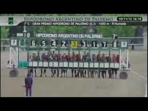 2012 Gran Premio Hipodromo de Palermo (G1) SABA EMPEROR