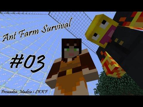 Ant Farm Survival #03