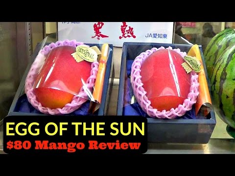 World's Most Expensive Mango - Egg of the Sun Review - Weird Fruit Explorer Ep. 167