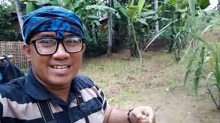 Wisata ke Perkampungan Suku Baduy Dalam Cibeo