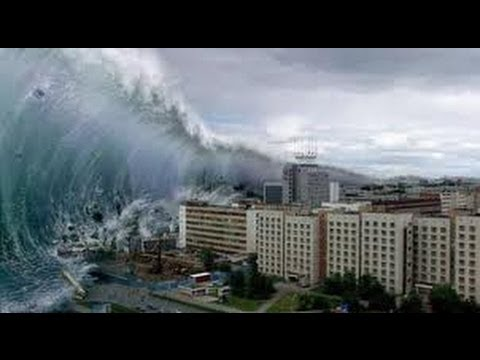 Tsunami in japan march 11 for Piscine 3 5 x 8