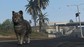 #290【GTA5(PS4・XboxOne)猫好き閲覧注意】猫が米軍基地に突入!!