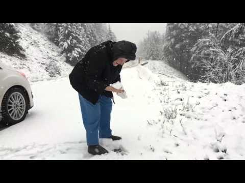 Kids Gets Shot After Throwing Snowball