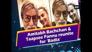 Amitabh Bachchan and Taapsee Pannu reunite for 'Badla' - Bollywood News