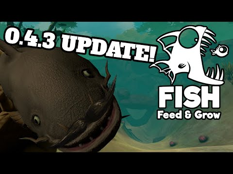 Catfish and New Map! | Feed and Grow FISH | 0.4.3 NOW ON STEAM!