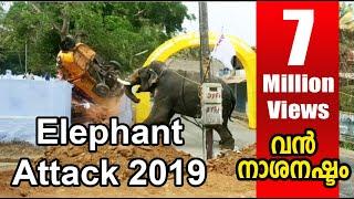 elephant attack   kerala 2019 april kuzhalmannam