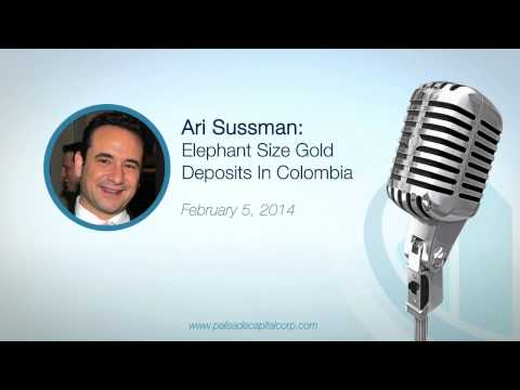 Ari Sussman: Elephant Size Gold Deposits in Colombia - 2/5/14