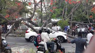Chennai Road Accident | Videos on Car Accident