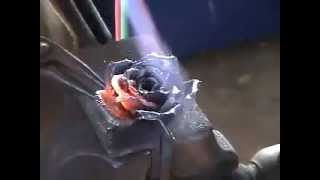 The Forged Rose II