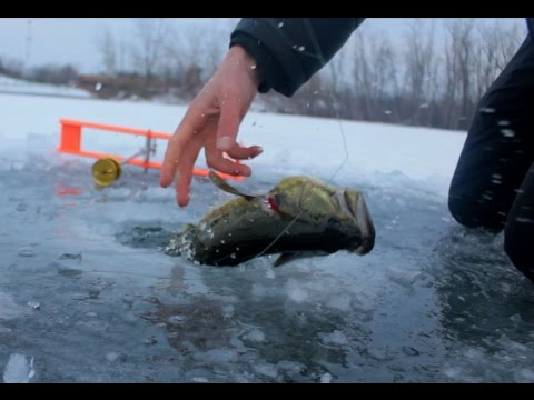рыбалка на жерлицу в украине