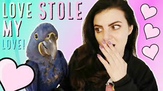 MEET LOVE THE BABY HYACINTH MACAW!   OH NO! We look Like The Crazy Bird Lady!