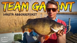 download lagu Värsta Abborrefisket 2,05 Kg  Team Galant English Subtitles gratis