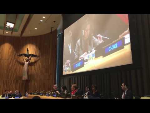 Заседание в ООН началось с минуты молчания в память о Виталии Чуркине