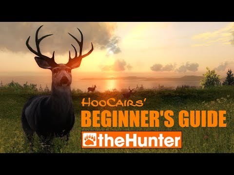 theHunter Beginner's Guide