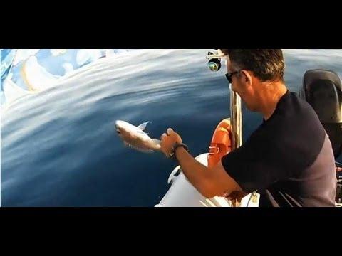 dentex-1  ΧΩΡΙΣ ΣΧΟΛΙΑ'''sotos fishing.wmv