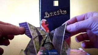 Easy Origami Butterfly.avi