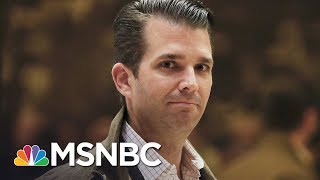 Donald Trump Jr's Hard-To-Believe Memory Lapses | The Last Word | MSNBC
