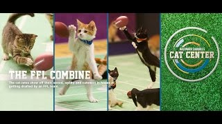 Cat Center - The FLL Combine