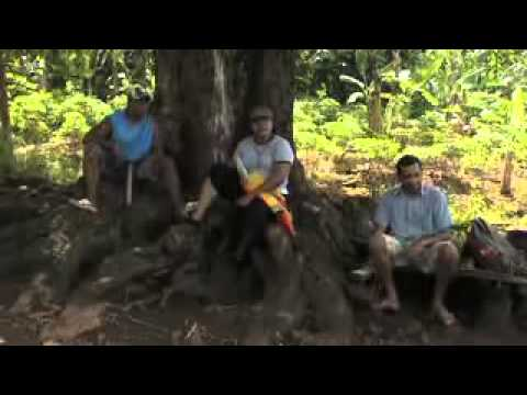 Innovating Rural Development -- MORDI Tonga