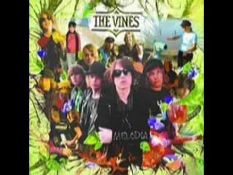 Vines - Autumn Shade Iii