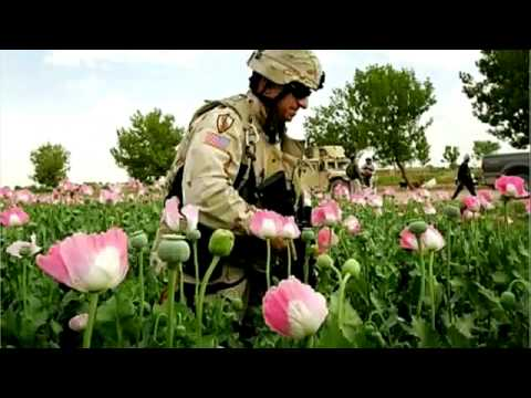USA Media-Exposing the TRUTH-- WAR in IRAQ