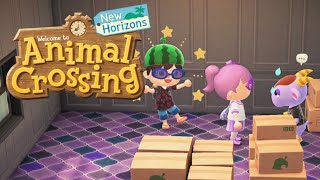 Kidd in Boxes - Animal Crossing: New Horizons Part 36