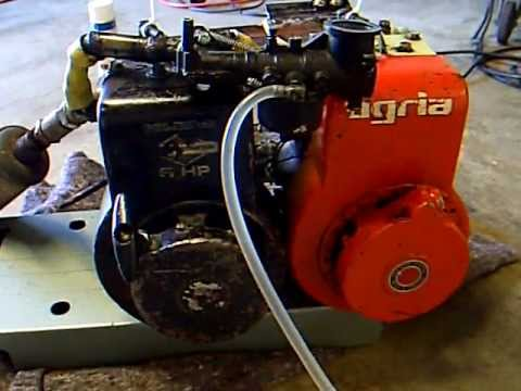 homemade twin cylinder briggs & stratton engine