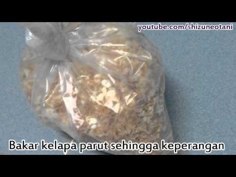 Resepi - Nasi Kerabu (Kelantan)