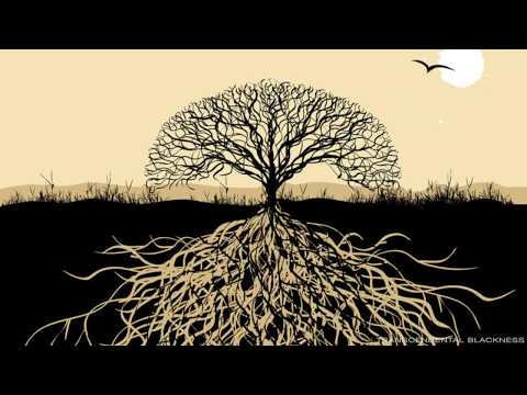 Blackroots Science :The Black Consciousness Elders