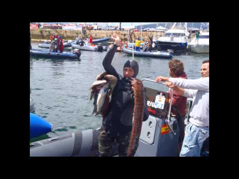 WC Spearfishing 2012. Vigo, Spain.