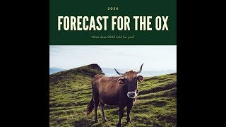 OX 2020 Astrology