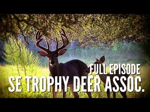 Southeast Trophy Deer Association | Deer & Wildlife Stories
