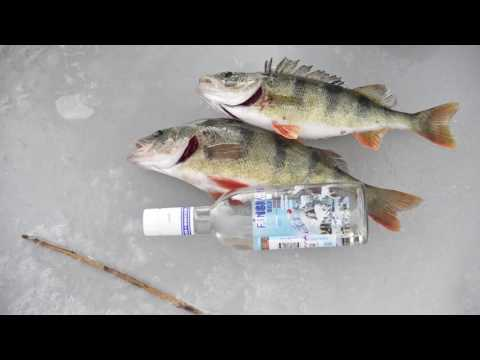 рыбалка на бузане в сентябре видео