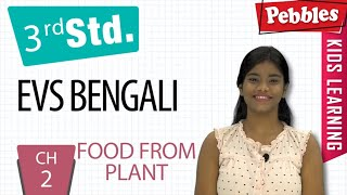 3st Std Environmental science in Bengali|Food From Plant-3|CH-2|Environmental Studies|Bengali Video