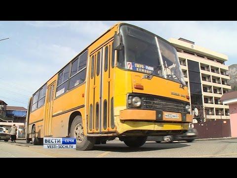 50 лет назад в Сочи начали поступать Икарусы, автобусы последнего поколения