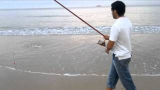 DORADA CHICO 2011 PESCA SURFCASTING, ORATA 2011, DAIWA TOURNAMENT 33, CHICOSURFCASTING