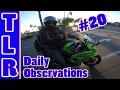 Daily Observations #20 | Ninja 300