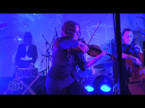 The Crooked Fiddle Band - What the Thunder Said (Live in Sydney)