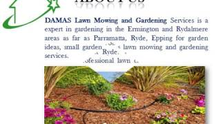 Maintain your lawn with Gardening Services in Beecroft
