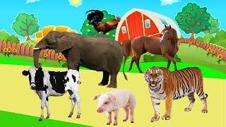 Tiergeräusche für kinder | VIDEO 3D 40 tiere lernen im dschungel , bauernhof