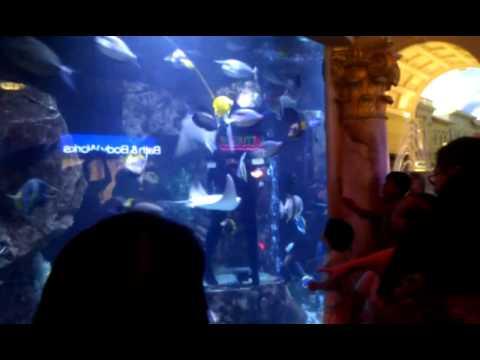 Atlantis aquarium at The Forum Shops in Las Vegas (part 2)