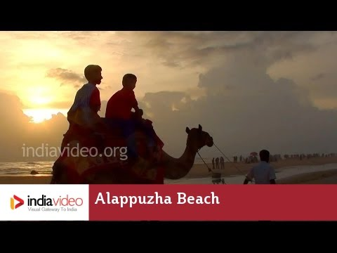 Alappuzha Beach and Sea Bridge, Kerala