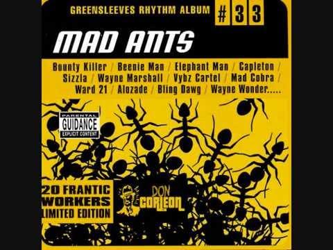 Mad Ants Riddim Mix (2002) By Dj.wolfpak video